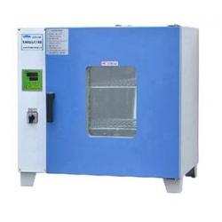 GZX-DH600-BS电热恒温干燥箱